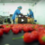 Food process factoru